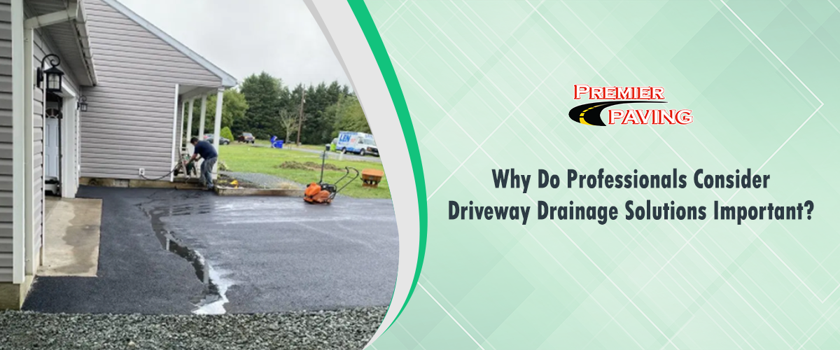 Why Do Professionals Consider Driveway Drainage Solutions Important?